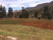 Das Feld ist dieses Jahr auch kahl. Der ausgesähte Mais und die Saat-Kartoffeln sind ohne Regen eingegangen. Ohne Ernte wird es diese Jahr hart im Winter.