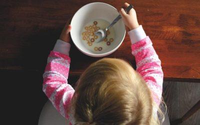 La pensión de alimentos: litigios y mediación