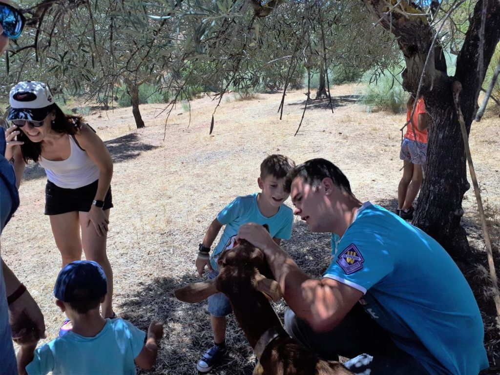 Pastor explicando curiosidades de la cabra autóctona malagueña