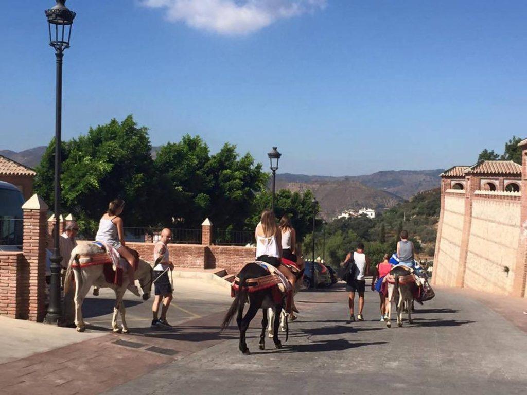 Paseo en burro-taxi por Comares en Málaga