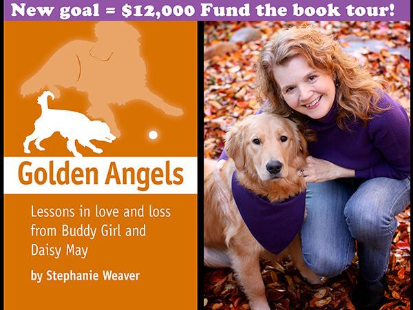 Golden Angels Kickstarter Campaign