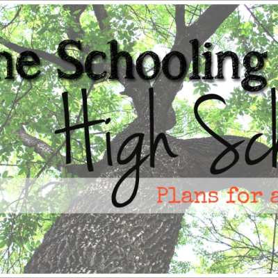 Homeschooling into Highschool:  Plans for a Freshman