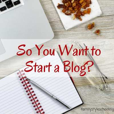 So you think you might like to start a blog