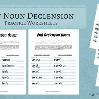 Latin Nouns Declension Free Printable