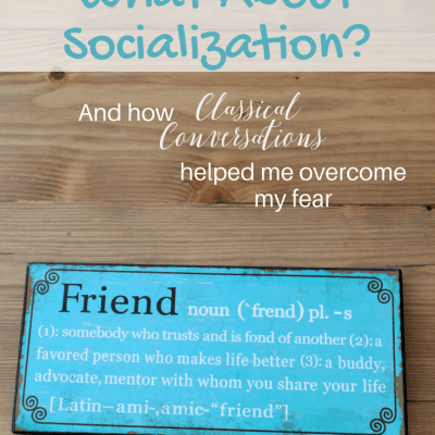 Homeschool Fear: What about socialization?