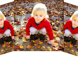 Duplicated photo of small child scooping up fallen leaves from the ground.