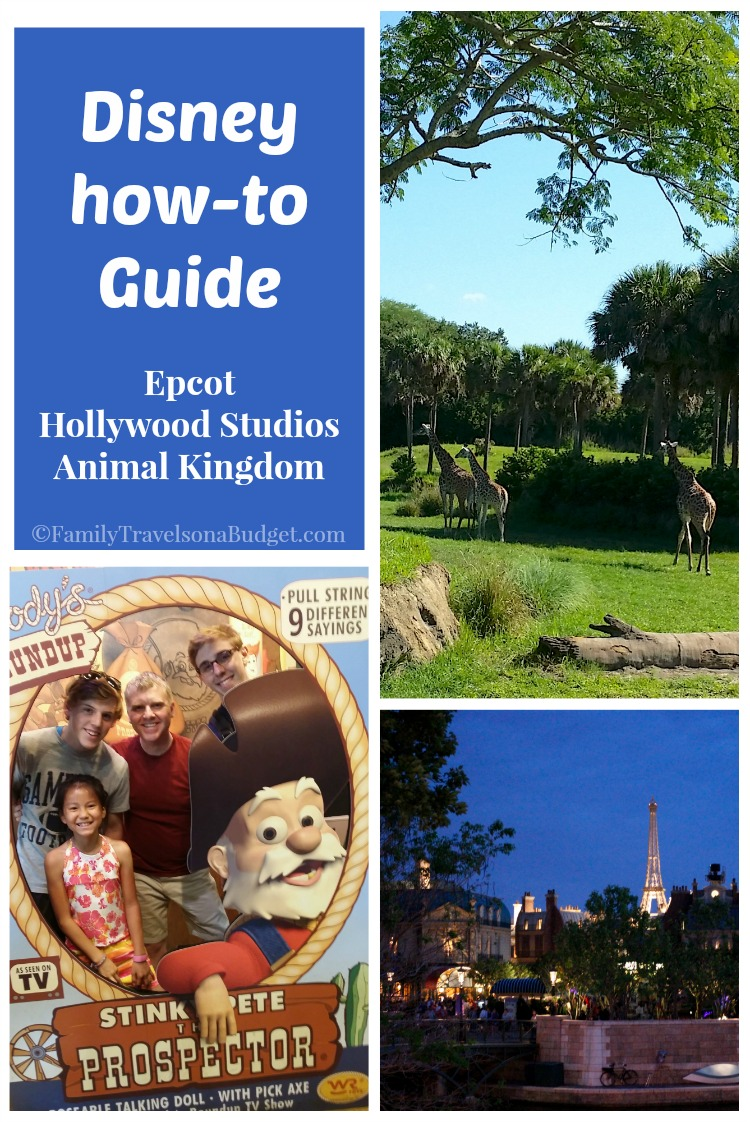 Disney how-to guide
