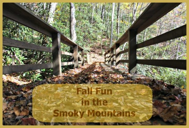 smokymountains