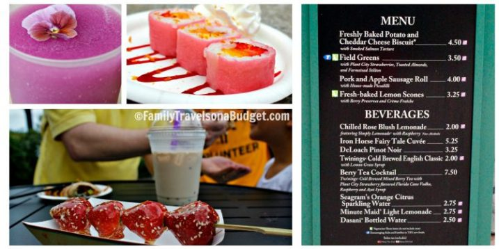 Epcot Flower and Garden Festival Food