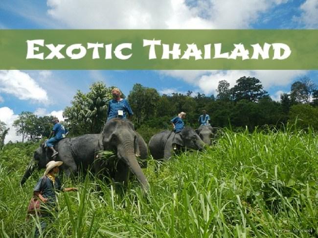 Thailand #Sponsored