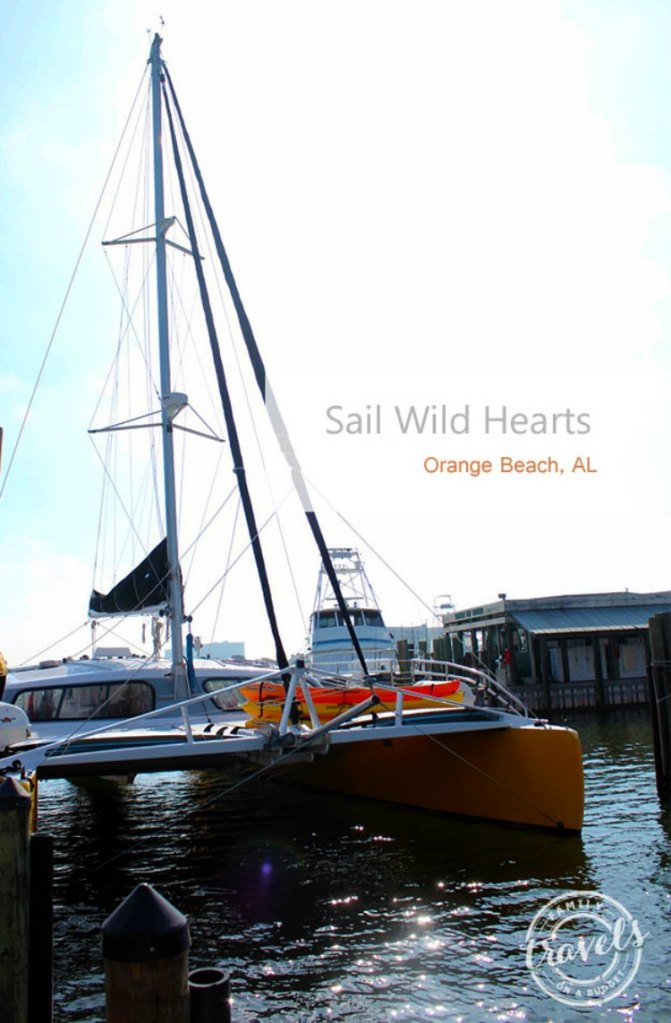 Sail Wild Hearts and the Blue Angels