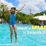 5 star summer fun in Sarasota