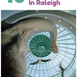 10 family fun Raleigh activities