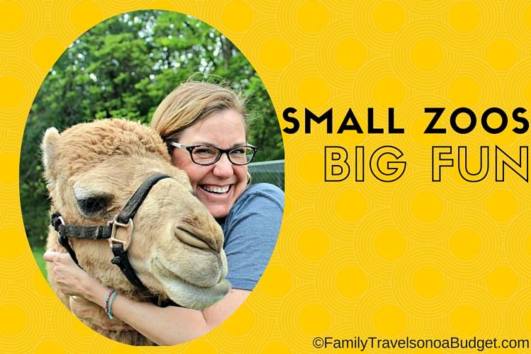 Small Zoo Big Fun