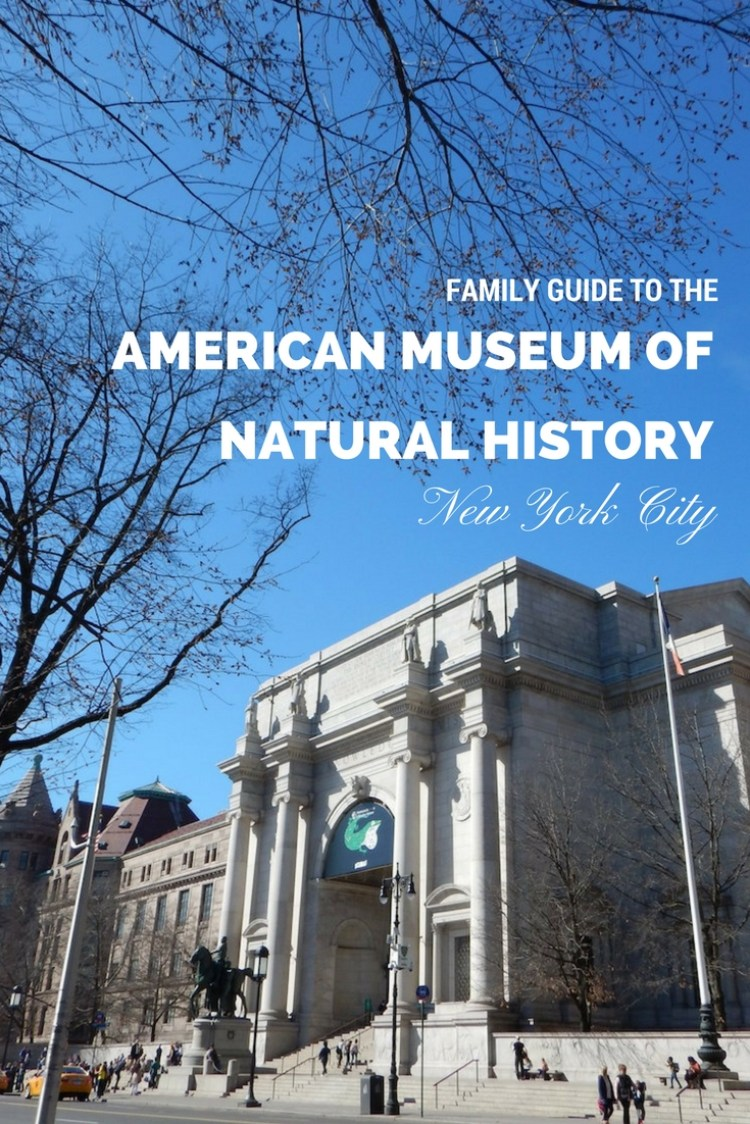 Family Guide to the American Museum of Natural History in NYC