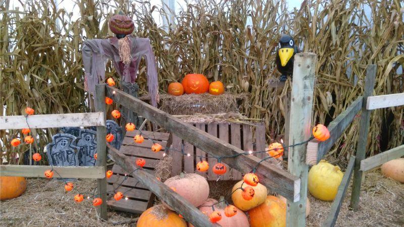Halloween in Kent