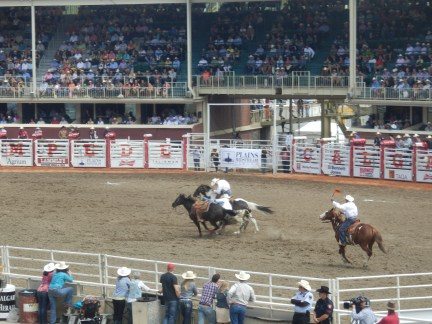 At the Rodeo