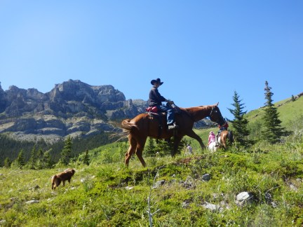 Haven on earth; dog, horse and high country.
