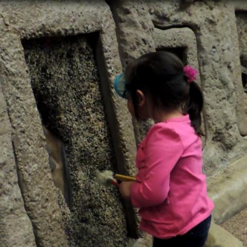 Buscando fósiles