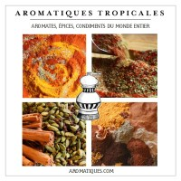 aromatiques-tropicales-298ko-famoh