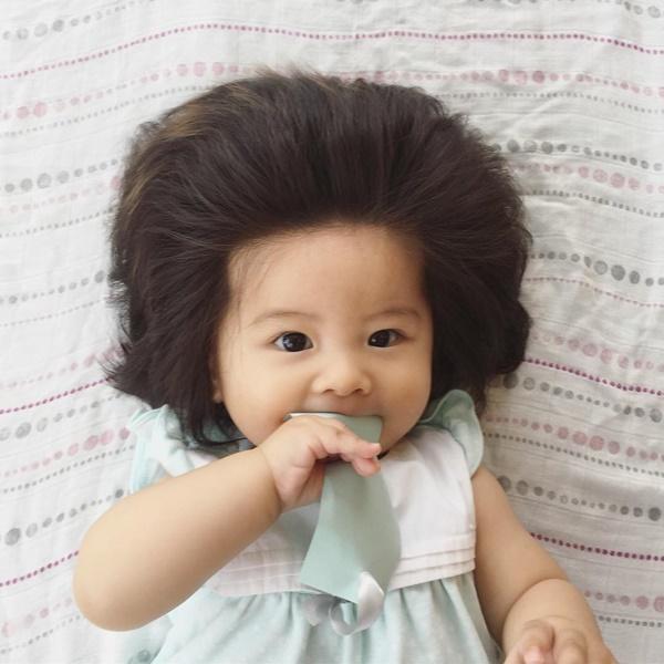 Baby Chanco Image