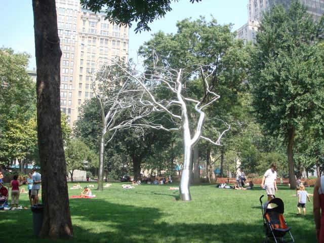 Madison Square Parktrees
