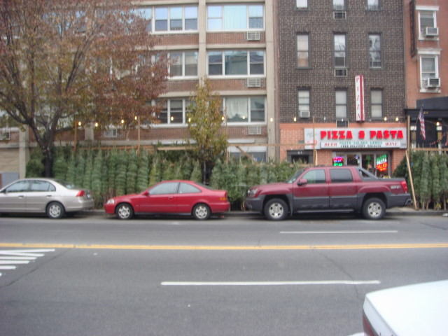 071209-14th-street-christmas-trees-01.jpg
