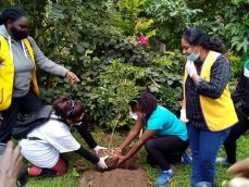 Young Nakuru Rotarians join hands to conserve environment