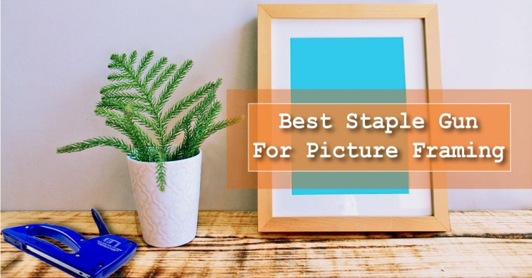 Best staple gun for picture framing
