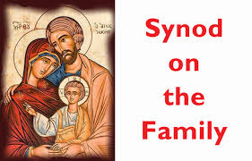 synod on family