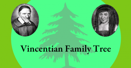 Pocket Guides to the Vincentian Family