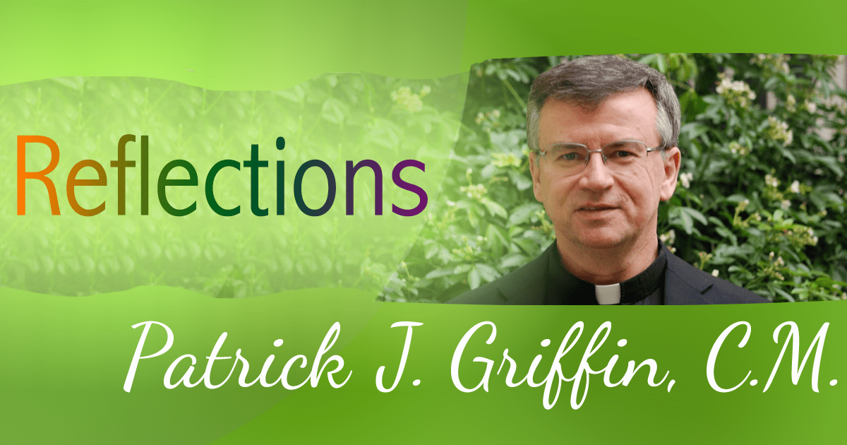 A Vincentian View: Be Radical