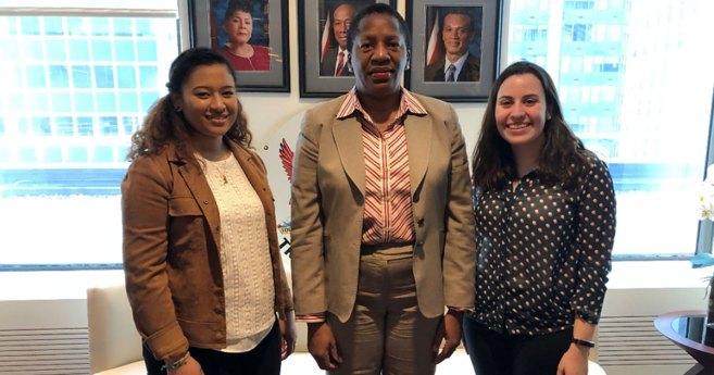 Interns Meet Diplomats