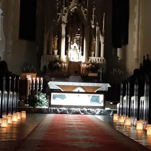 peregrination of st. vincent vol 3 09
