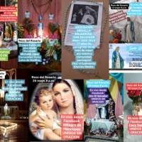 Virtual Pilgrimage of Our Lady of the Miraculous Medal (El Salvador) During the Pandemic