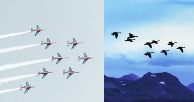 Flying Geese, Fighter Pilots and Ministry