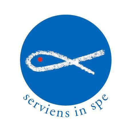 Año de la Colaboración Vicentina: la respuesta de la SSVP