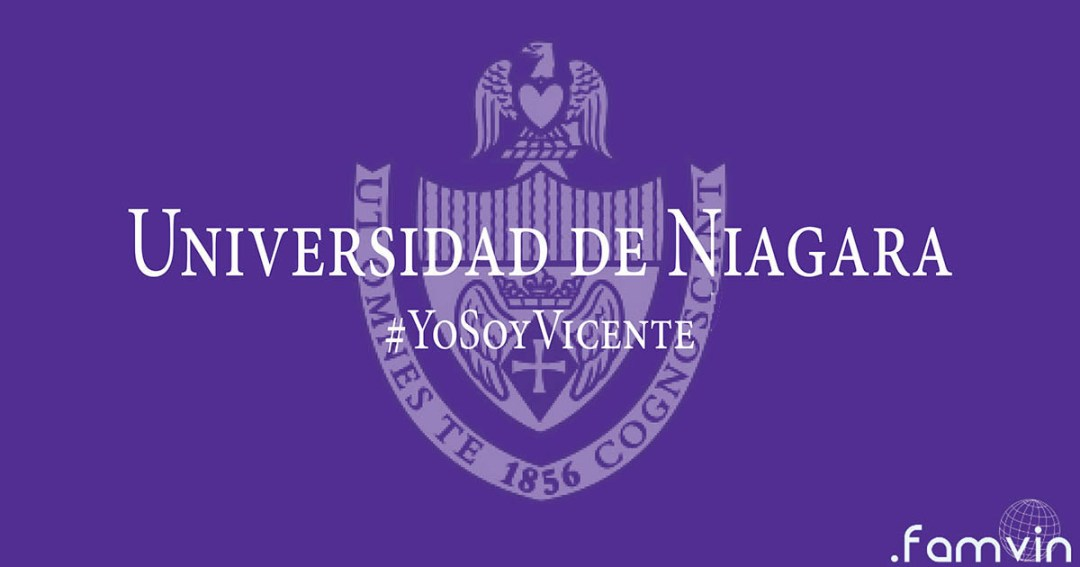 yosoyvicente-niagara-fb