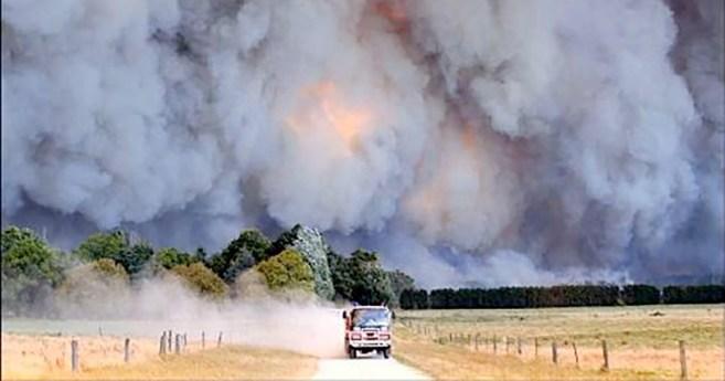 Incendios forestales en Australia. La terrible cara del cambio climático