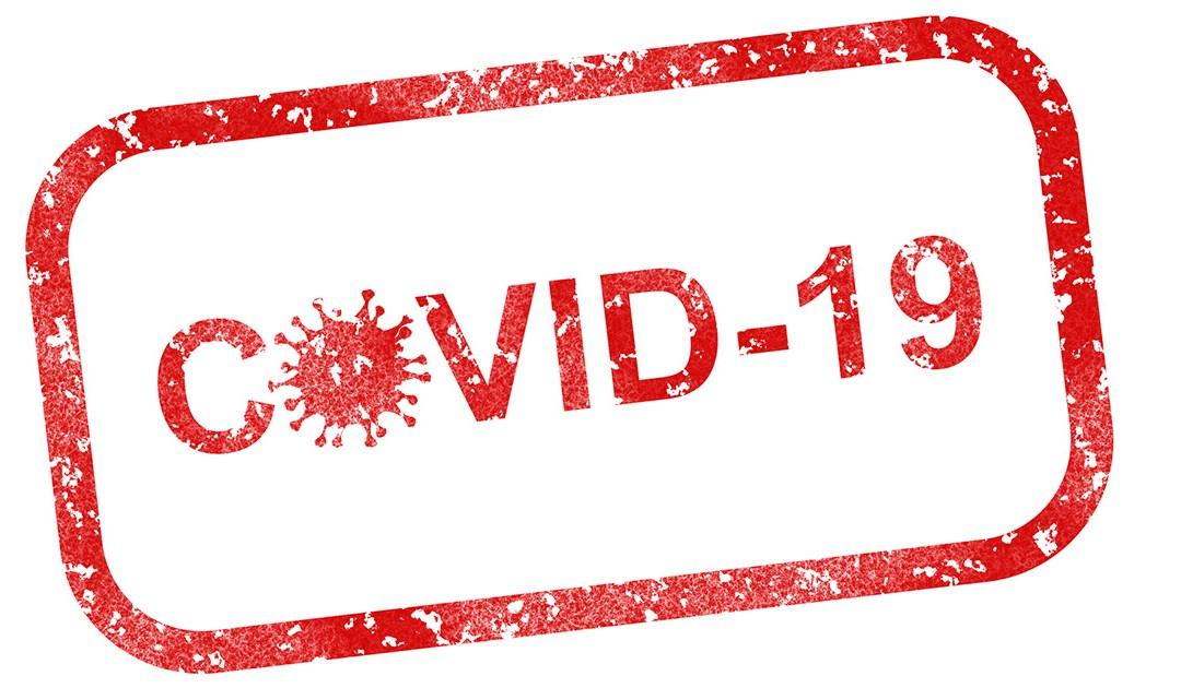 Decisiones tomadas por el presidente de la SSVP ante la pandemia del COVID-19
