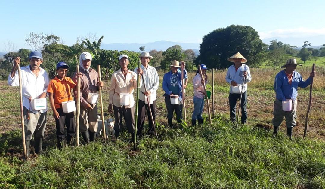 Apoyo de alimentos en la Provincia de Chiriquí, Panamá – Economía solidaria para afectados por el COVID 19