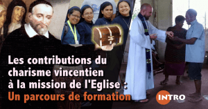delgado-vincent-contributions-intro-facebook-fr