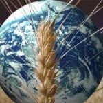 Primo vertice dei Ministri dell'Agricoltura: il G20 chiede più regole