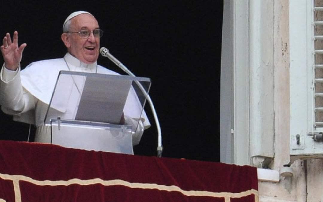 Papa Francesco all'Angelus: i verbi del Pastore