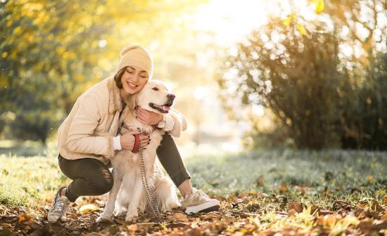 Famylia, votre pet sitter à Guidel dans le Morbihan et ses alentours
