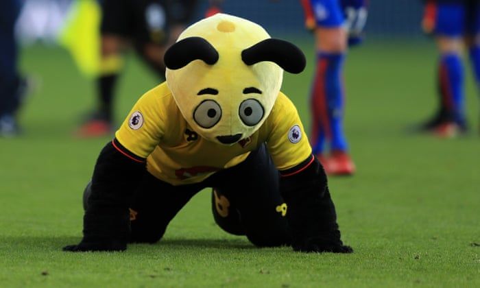The Best Mascots in English Football?