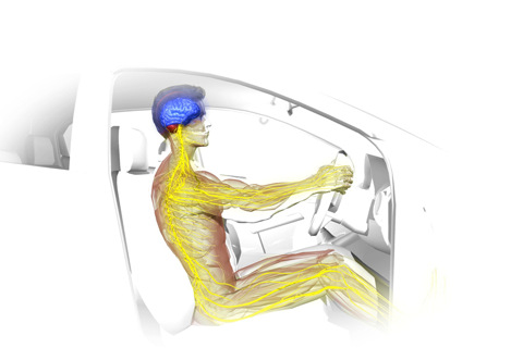 Travel Yoga 3D In the Car lite iphone app review