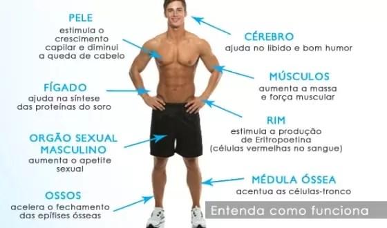 Reposição testosterona beneficios