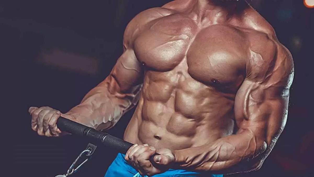 Como Ganhar Massa Muscular Sem Engordar