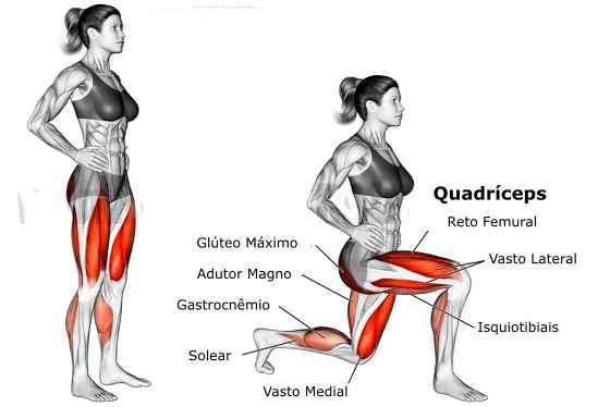 Quais Músculos o Afundo Trabalha?